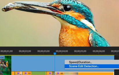 تشخیص تغییرات صحنهبا قابلیت جدید پریمیر پرو با نام Scene Edit Detection